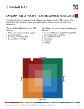 The Birkman Map, Stress